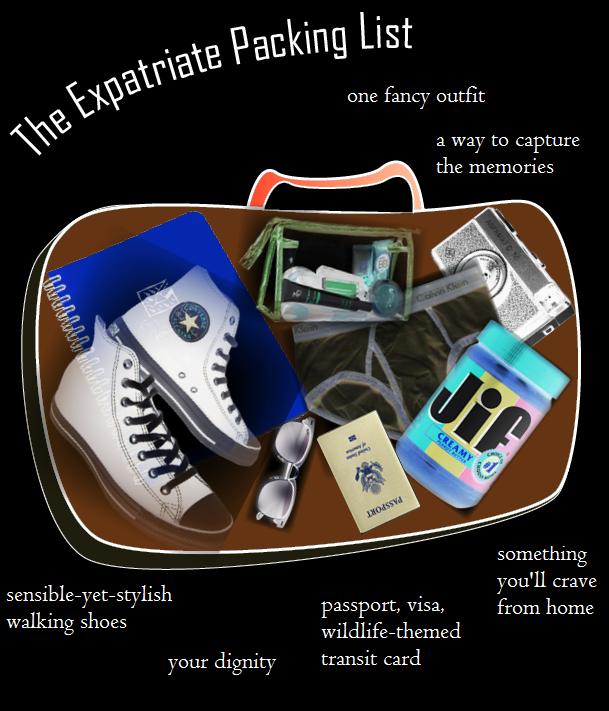 Summer Book Bingo: The Expatriate PackingList